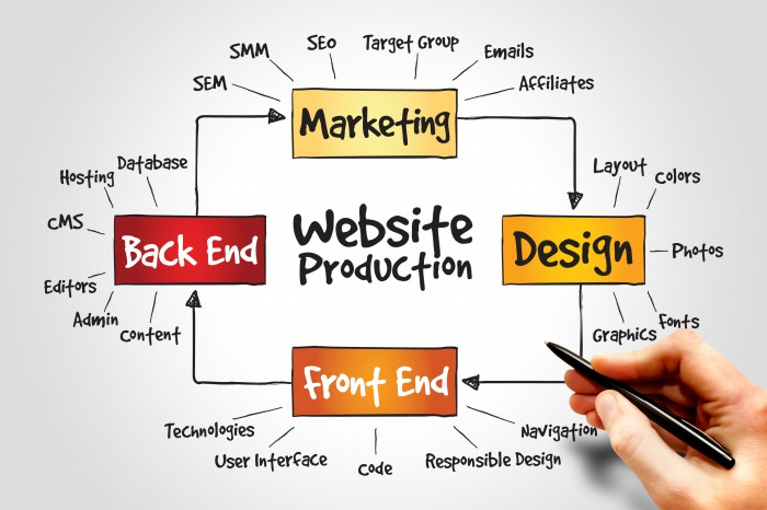 Choose the Right Web Designing Course in Zirakpur